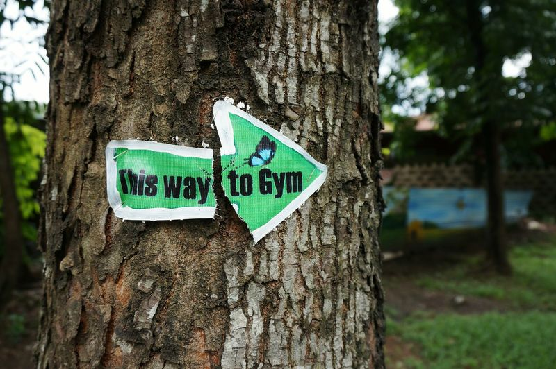 Gym Fitness Tree Trunk Tree Communication Outdoors Guidance Nature No People Message Park The Week On Eyem