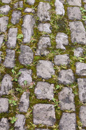 high angle view of stone road Backgrounds Built Structure Concrete Day Footpath Full Frame High Angle View Lichen MAI Moss Nature No People Outdoors Pattern Paving Stone Plant Rough Solid Stone Stone Material Stone Wall Textured  Wall