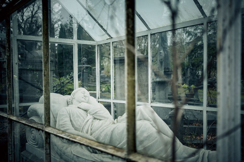 Cemetery Lenhay Glass - Material Window Transparent Reflection Indoors  Architecture Day One Person Nature Rear View Relaxation Adult Lifestyles Bed Rain Looking Through Window Wet Luxury Eerie Beautiful