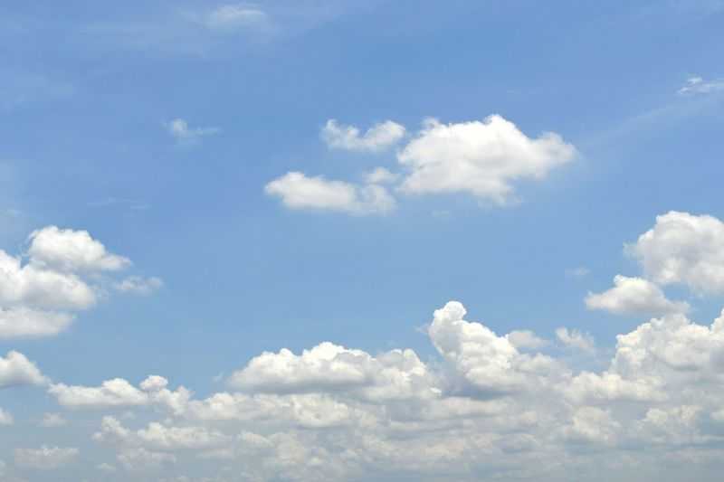 Beauty In Nature Sky Tranquility Low Angle View Scenics Blue Tranquil Scene Cloud Cloud - Sky Backgrounds Nature Sky Only White Majestic Cloudscape Heaven Day Full Frame Meteorology Outdoors