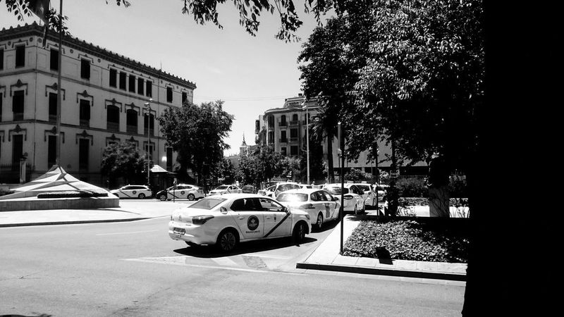 City Life Taxi Black And White Blackandwhite Building Building Exterior Built Structure Car City Day Land Vehicle Mode Of Transportation Monochrome Motion Motor Vehicle No People on the move Outdoors Plant Road Street Streetphotography Sunlight Transportation Tree