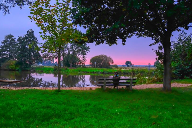 Teufelsmoor Worpswede Germany Fujifilm_xseries Fujifilm Abend Abendstimmung Bäume Plant Tree Water Seat Nature Growth Beauty In Nature Scenics - Nature Bench Grass Tranquil Scene Tranquility EyeEmNewHere The Great Outdoors - 2018 EyeEm Awards
