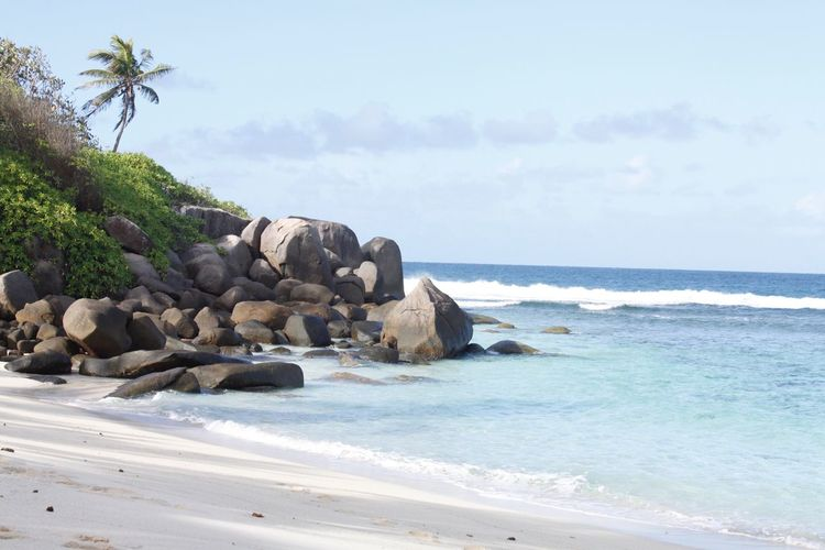 Hello World Hello Seychelles Paradise Seychelles Islands Seychelles Beauty In Nature Beach Nature Rock - Object Tranquil Scene Water No People Outdoors Sand Palm Tree Nature Africa Enjoying Life Taking Pictures Click Click 📷📷📷 Exploring Beach Life Beachin Real Life