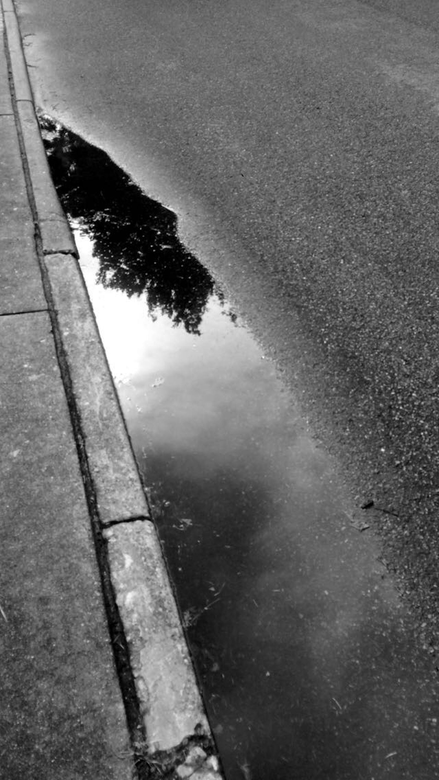 water, reflection, puddle, high angle view, tree, sky, nature, tranquility, wet, street, day, outdoors, road, sunlight, no people, shadow, sea, transportation, tranquil scene, lake