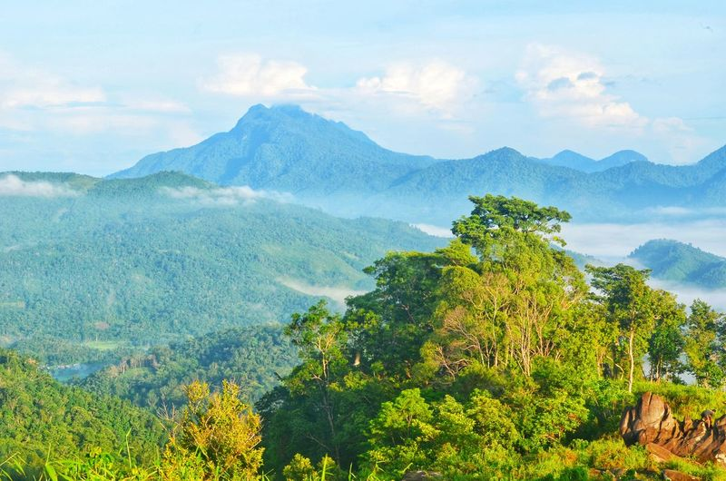 Wherever you see, you'll see the beauty of mother earth. jamur hill bengkayang, wes borneo indonesia