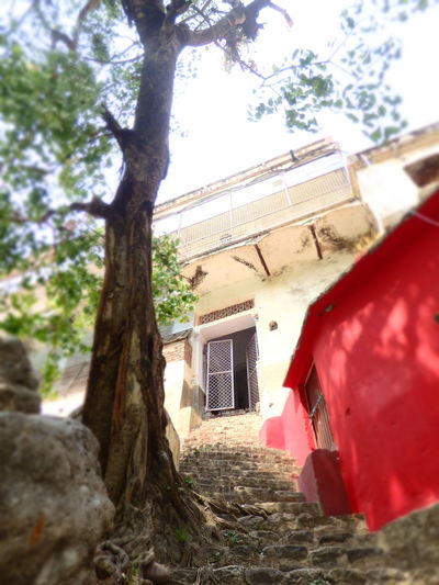 LaxmanJhula Tree Built Structure Day Daylight Ganga House No People Red Rishikesh