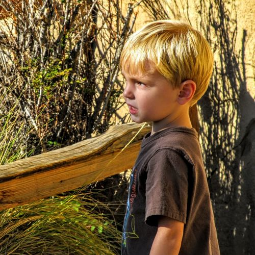 Side view of boy standing by plants