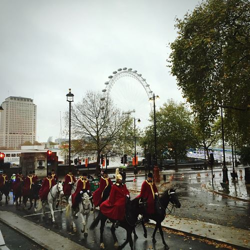 London Horseguards LondonEye Embankment Fall Leaves Rainy Days Traveling Sightseeing Travel Photography People And Places People And Places.