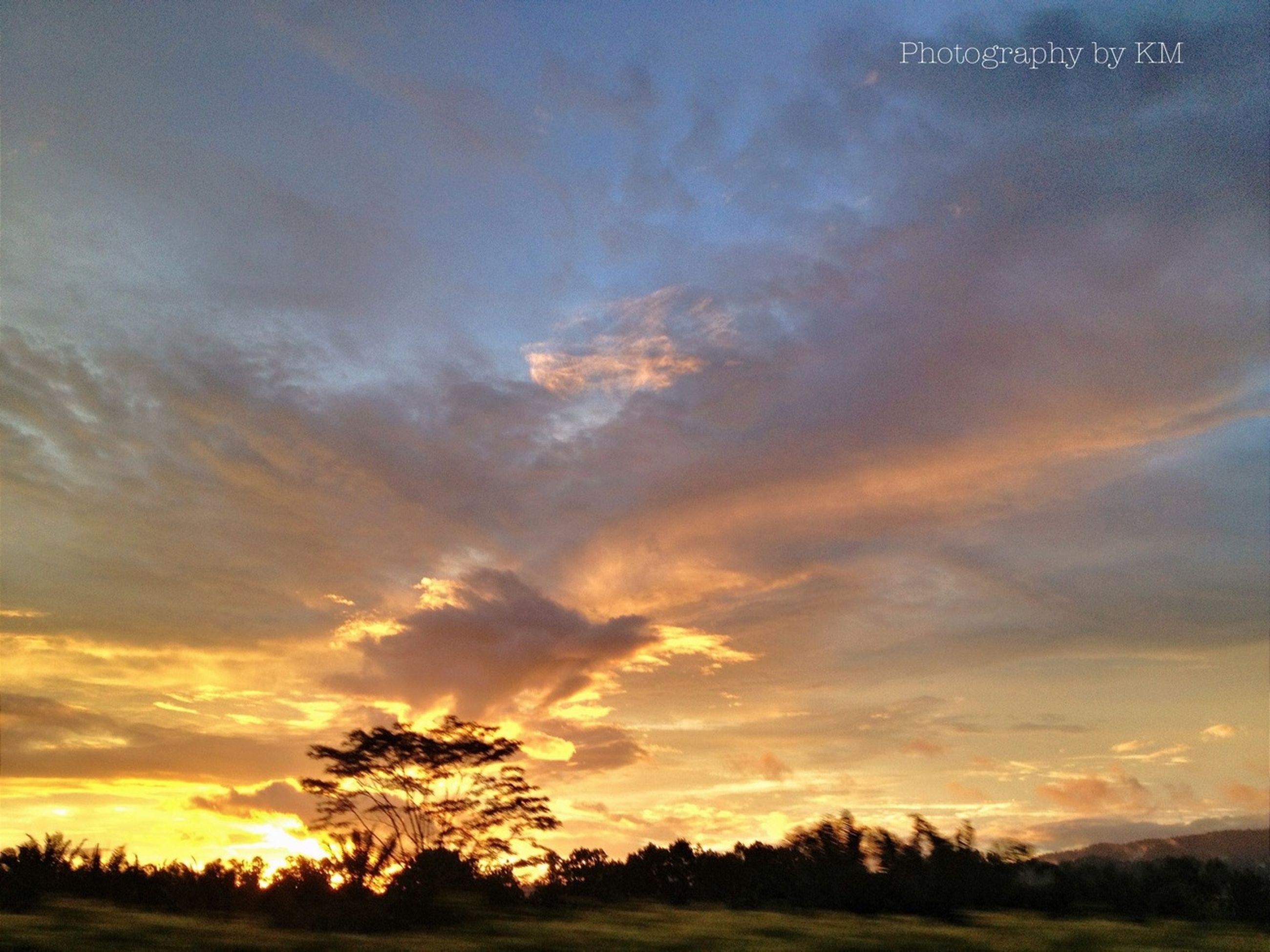 sunset, sky, tranquil scene, scenics, tranquility, beauty in nature, silhouette, orange color, cloud - sky, tree, nature, idyllic, dramatic sky, landscape, cloud, field, moody sky, outdoors, majestic, sun
