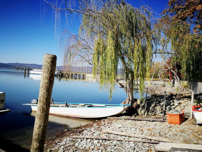 Water Day Outdoors Tree No People Sky Nature Shadow Clear Sky Close-up Lake Lake View Fishing Boat Boat Island
