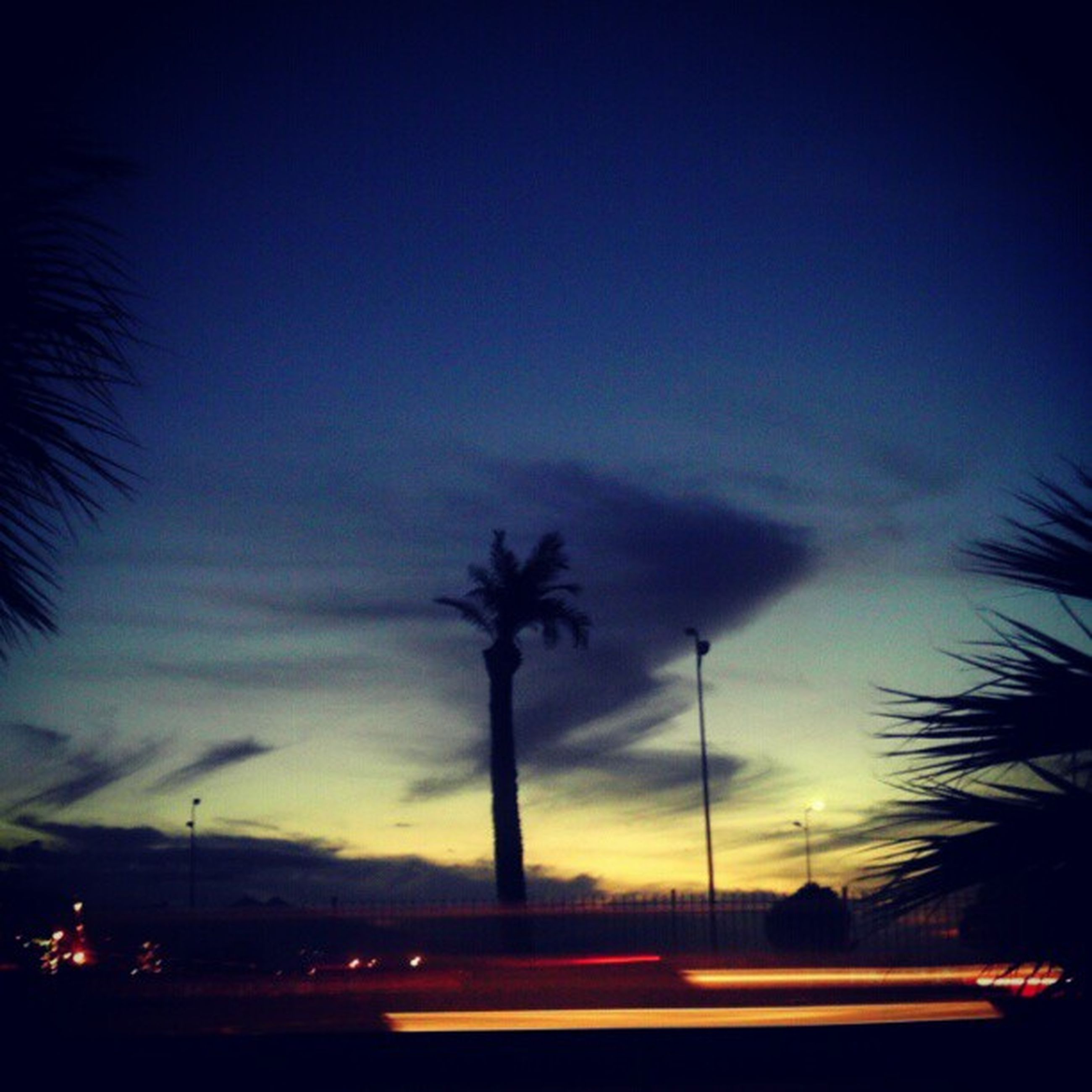 transportation, illuminated, car, sky, road, land vehicle, silhouette, street light, mode of transport, night, sunset, palm tree, tree, street, dusk, traffic, cloud - sky, long exposure, blue, motion