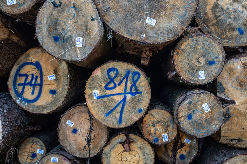 Abundance Backgrounds Close-up Cylinder Day Design Firewood Full Frame Heap Large Group Of Objects Log No People Number Outdoors Shape Stack Still Life Timber Wood Wood - Material