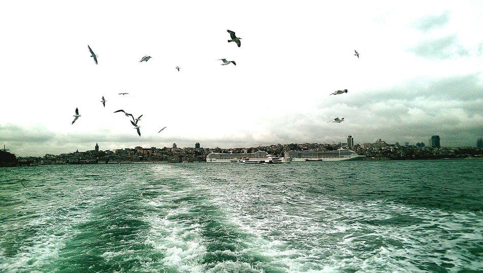 Eminönü Vapur Istanbuldayasam ıstanbul Istanbulove Istanbul Turkiye