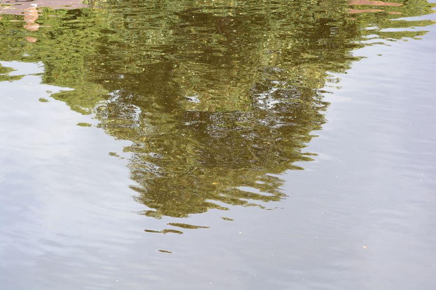 Allmyphotography No Edit/no Filter Outdoors No People Reflection Arty Knaresborough