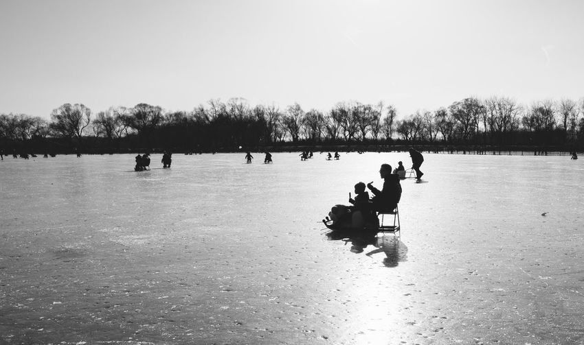On the Kunming Lake Adult Clear Sky Cold Temperature Day Domestic Animals Full Length Ice Rink Lake Leisure Activity Lifestyles Mammal Men Nature Outdoors People Real People Sky Tree Water Winter