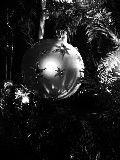 christmas tree at home Christmas Tree
