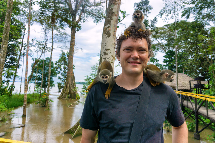Three squirrel monkeys on a tourist near Leticia, Colombia Amazon Amazonas Amazonia America Colombia Conservation Forest Jungle Leticia Man Monkey Monkeys Nature Outdoors Rainforest River South Squirrel Tourism Travel Tree Tropical Vegetation Wild Wildlife