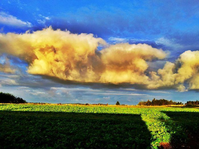 Clouds Clouds And Sky Cloudporn Cloudscape