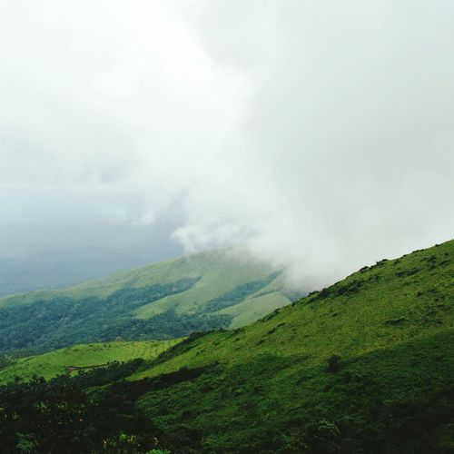 Nature Beauty Of Nature Beauty In Nature Chikmangalur Peak Misty Green Green Green!  Wanderer Travellust