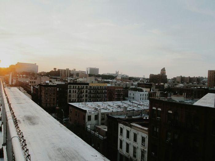 Nitty New York