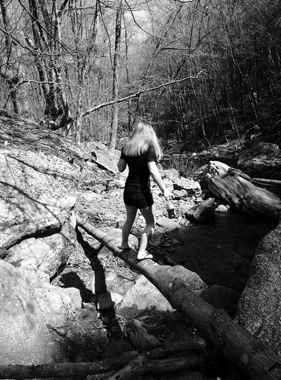 Rear view of woman standing on fallen tree at forest
