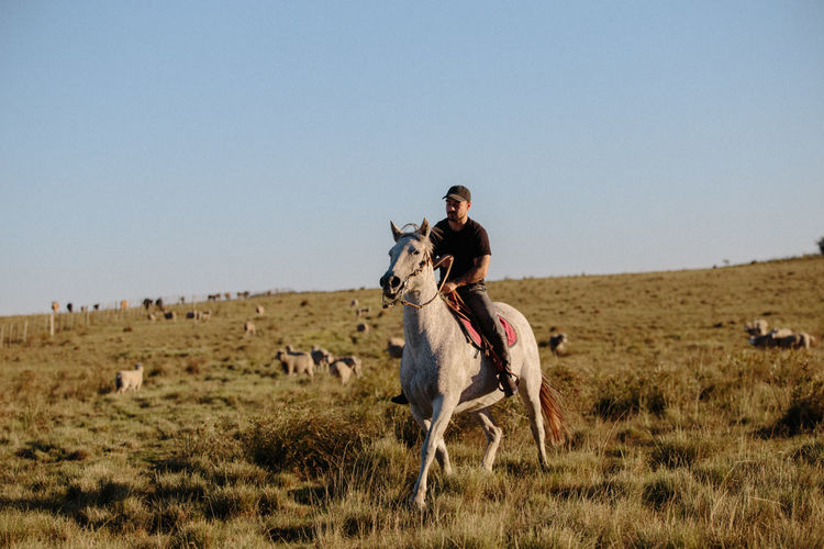 Man riding horse on field against clear sky
