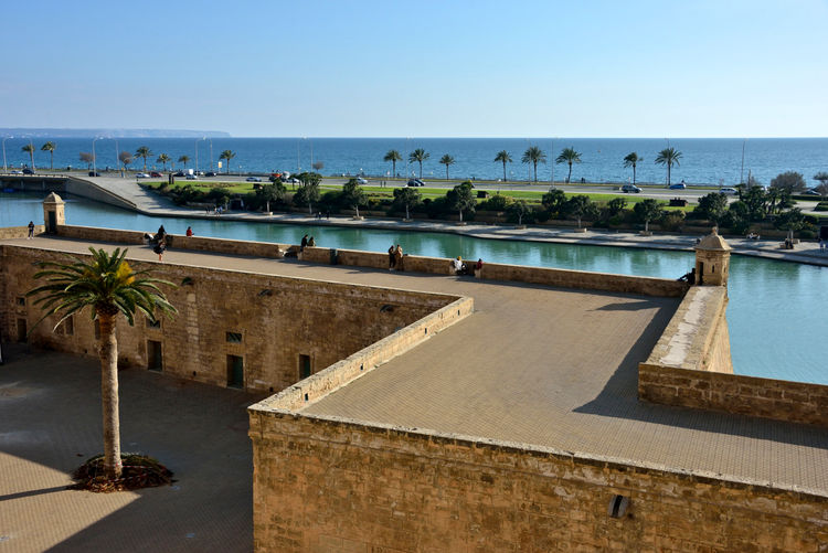 seafront view of medieval wall and palm trees in Palma de Mallorca Water Sky Sea Clear Sky Architecture Tree Nature Horizon Over Water Horizon Tropical Climate Day Built Structure Travel Destinations Palm Tree Scenics - Nature Outdoors No People Palma De Mallorca Wall - Building Feature Medieval Wall Seaview Seafront Historical Building Highlights