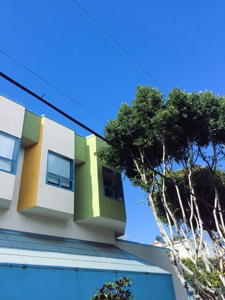 Architecture Blue Building Exterior Built Structure Cable Clear Sky Day Green Color House Low Angle View Nature No People Outdoors Sky Sunlight Tree Window