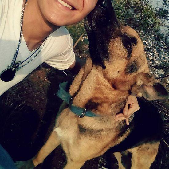 👽🐕 Dog Love Animal One Animal Pets