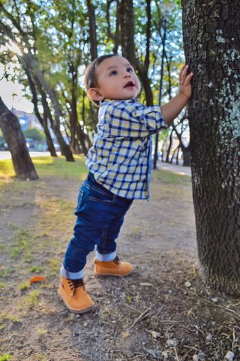 Babyboy Baby Casual Clothing Tree Nature Sunset Happy Smile Oneyear Photoshoot Fall Boots Beauty Cute Day