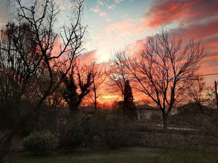 Tree Susnet Amazing View Sky Cold Sungoesdown Colors Colorful View Frommywindow 2017 Wintersky Nature Photography Beaytifulview Beauty In Nature No People Outdoors Scenics