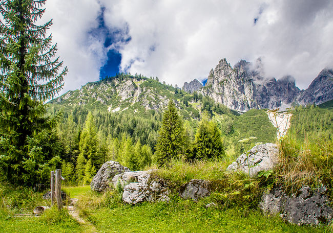 Mountain path Holidays Marierichphotography Olympus Tourist Tourist Attraction  View Beauty In Nature Cloud - Sky Day Forest Grass Green Color Landscape Mountain Mountain Range Nature No People Outdoors Scenics Sky Summer Tourist Destination Tranquil Scene Tranquility Tree