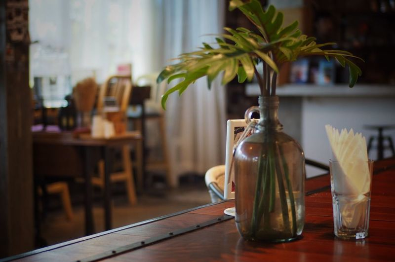 Plants in bottle by tissue papers on table at restaurant
