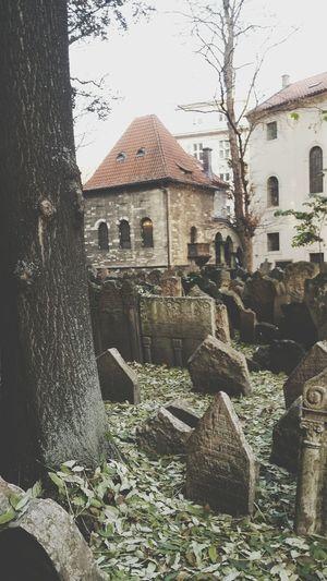 Praha ❤️ Schooltrip 🎓 Jewischchurchard