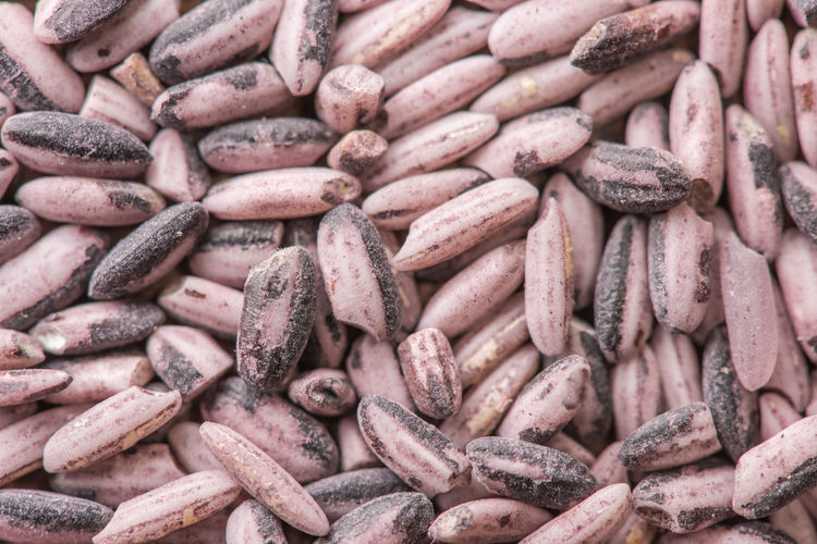 The background of eating red rice for a healthy diet, gluten free diet.