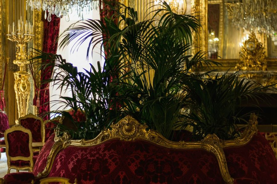 Paris Louvremuseum Napoleon Art Interior Design AMPt Community Getting Inspired Taking Photos Beauty 43 Golden Moments