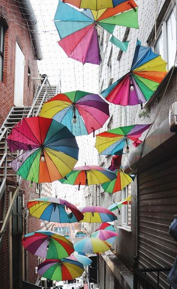Multi Colored Art And Craft No People Creativity Pattern Wall - Building Feature Graffiti Low Angle View Design Architecture Decoration Built Structure Day Hanging Craft Full Frame Large Group Of Objects Outdoors Shape Ceiling