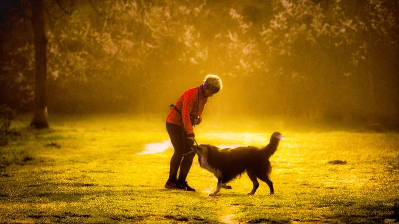 This Morning Sundaymorning Morning Light Morning Walk Outdoors Springtime EyeEm Best Shots EyeEm Best Edits Catch The Moment Foggy Morning Street Life Enjoying The View Woman And Dog Hannover, Germany