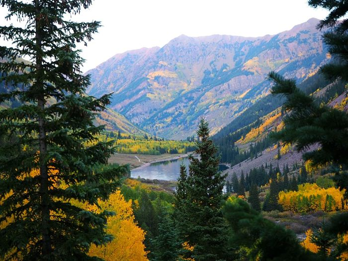 Fall in Colorado Mountain Tree Colorado Fall Aspen, Colorado Rocky Mountains Maroon Bells Hiking Adventure Vacation The Great Outdoors - 2019 EyeEm Awards