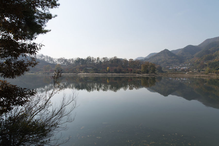 autumn landscape of Busodamak, a beautiful lake located in Okcheon, Chungbuk, South Korea Autumn Busodamak Okcheon Autumn Lake Beauty In Nature Clear Sky Day Lake Lake In Autumn Lake In The Morning Morning Lake Mountain Nature No People Outdoors Reflection Scenics Sky Tranquil Scene Tranquility Tree Water