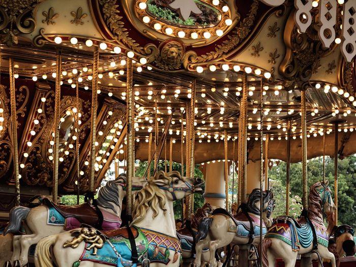 Illuminated carousel at amusement park