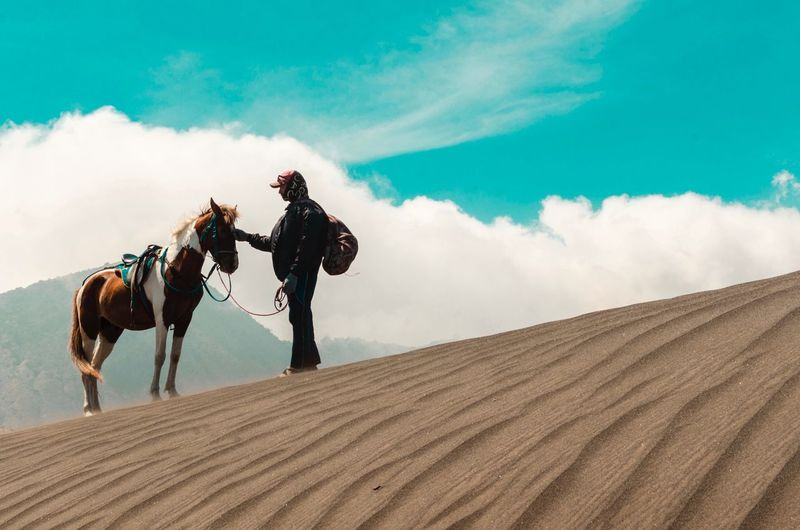 Horseman Horseman Sand Patterns Horse Bromo Mountain EyeEm Selects Amazing Scenery Travelphotography Travel Mammal Domestic Animals Land Riding Domestic Sand Ride Real People Sky Nature Horseback Riding Activity Landscape Livestock Cloud - Sky Pets Horse Men Outdoors