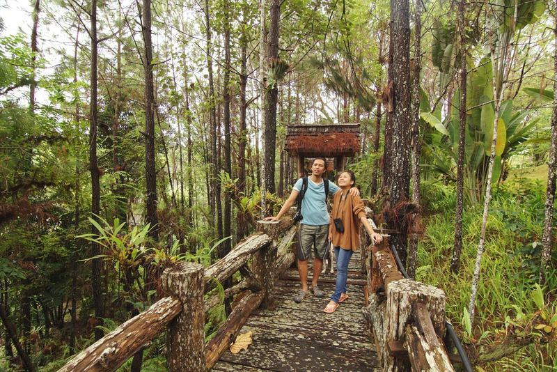 In The Forest Ecotourism Escape From Reality Natural Healing North Of Thailand Conservation Traveling Asian  Photographer Trekking Green Nature Couple Moment Experience Together Birdwatching People Together People And Places