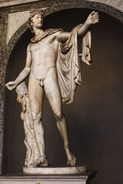 A statue of elegance Vatican Vatican Museum Scultpure Statue Italy Apollo Belvedere Vatican City Pythian Apollo Italian Renaissance Greek God Greek Mythology 15th Century Neoclassical Arrow Python Snake