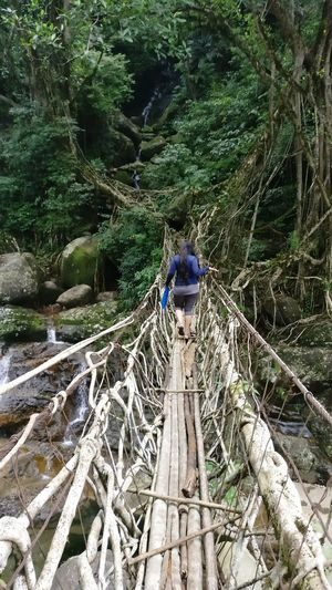 Done That. Real People Tree Day Men Transportation One Person Outdoors Nature Lifestyles Occupation Full Length People wire bridge Meghalaya Be. Ready. Summer Road Tripping