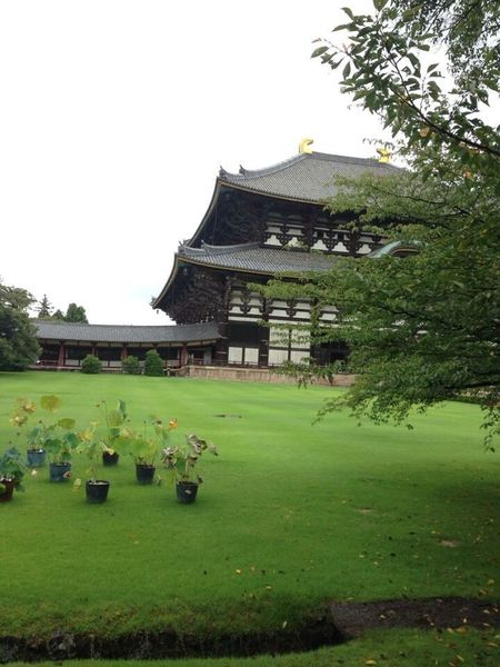 Japan Culture Japanese Garden Japanese Traditional Japanese Shrine By Cathy Badi