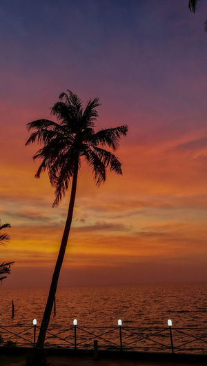 Silhouette palm tree by sea against romantic sky at sunset