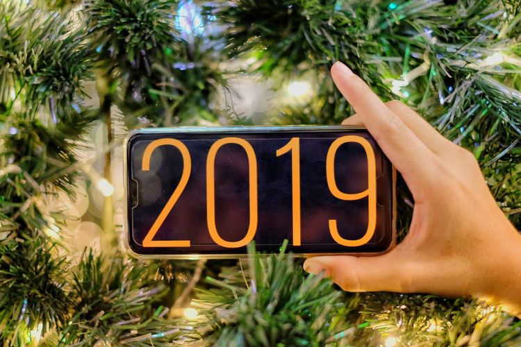 Happy New Years Christmas Ornament Christmas Decoration 2019 Bokeh New Year Christmas Lights christmas tree Tree Palm Tree Text Close-up Grass Pine Tree Pine Woodland Evergreen Tree Eastern Europe