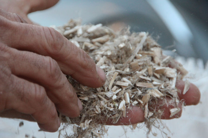 Greatest building material held by a great hand of a great dude... Human Hand Human Body Part One Person Close-up Working Day Hempcrete Hemp And Lime Natural Building Sustainability Survival Hemp Fiber Dried Hemp