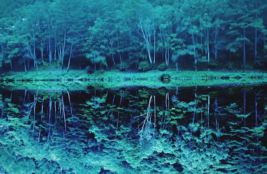 Dreamy Reflection Water Reflections Nagano Japan Nature Mirror Upsidedown 反射 鏡 Symmetrical